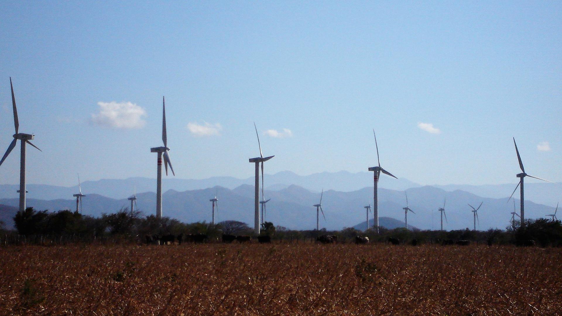 ¿El viento solución energética?-image3